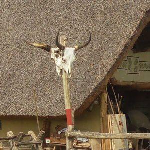 Újszkítia, az élő régészeti telep